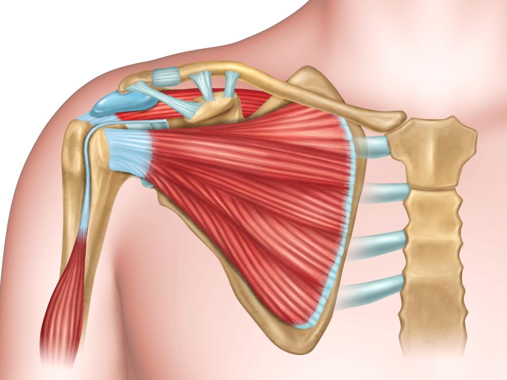 inflammation i axeln symtom