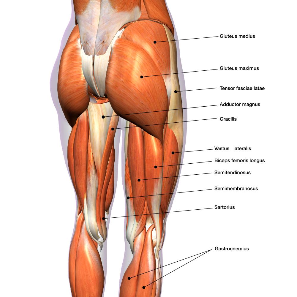 ont i höger höft och rygg